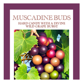 Butterfields Old Fashioned Candies by Butterfields Candy - Muscadine Buds hard candy with wild grape burst